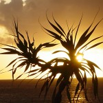 沖縄の風景-夕暮れの海 恩納村