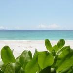 沖縄の風景-昼の海 本部町